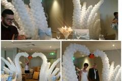 swan arch